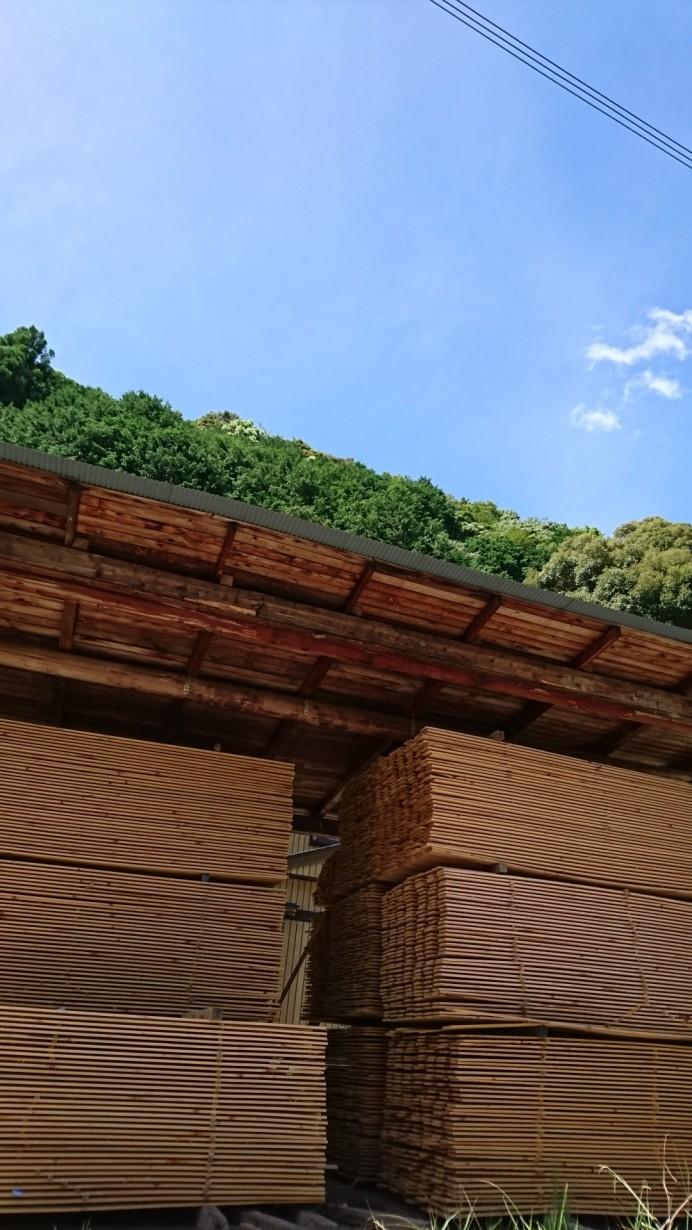 自然乾燥中ひのき天板